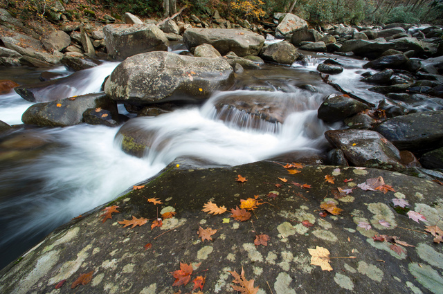 In this Nov. 5, 2015, file photo, the West Prong Little Pigeon River flows over rocks dotted with fall foliage in the Great Smoky Mountains National Park, Tenn. The National Park Service is celebr ...