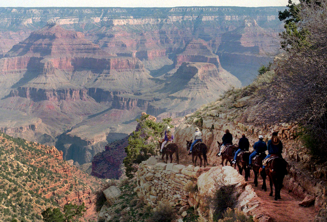 In this March 27, 1996, file photo, a mule train winds its way down the Bright Angel trail at Grand Canyon National Park, Ariz. Around five million people each year visit the park, according to th ...