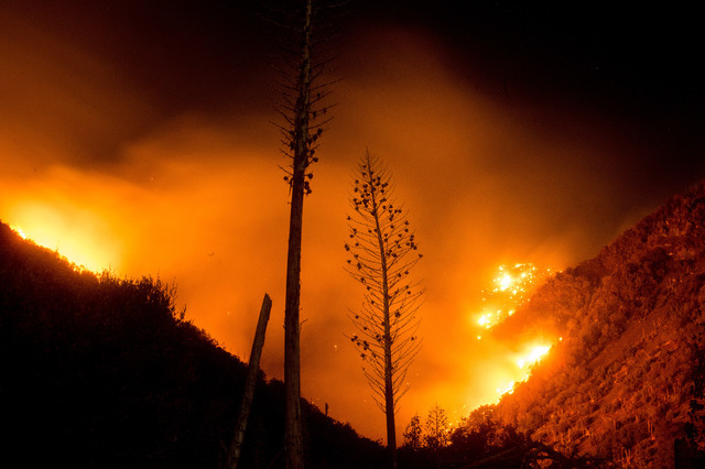 The Blue Cut fire burns in Upper Lytle Creek near Wrightwood, Calif., Friday, Aug. 19, 2016. (Noah Berger/The Associated Press)