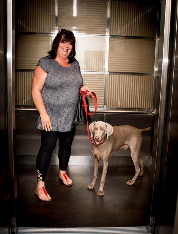 Las Vegas high-rises offer pet amenities   Las Vegas Review