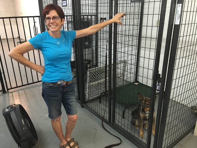 Diana England gives a tour of A Home 4 Spot's facility in downtown Las Vegas. England, a former northwest-area resident, started the nonprofit in March 2009. The volunteer-based organization provi ...