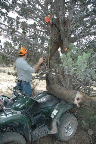 A tree that provides shade throughout the day will help keep you game meat clean cool and dry. Hang your game animal where you have room to work and where it will remain shaded throughout the day. ...