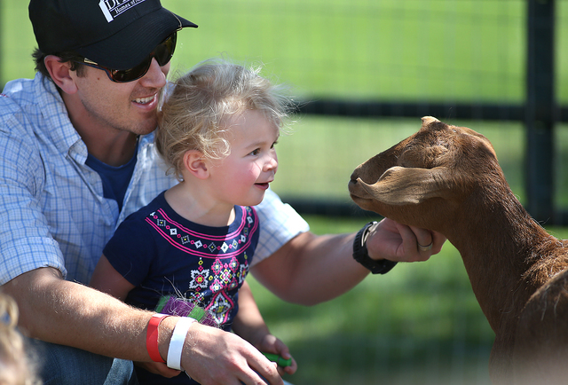 Daniel DiLoreto and his daughter Abigail, 2, pet goats at the second annual Basque Fry in Gardnerville, Nev., on Saturday, Aug. 20, 2016. The Republican rally and Basque-themed barbeque attracts p ...