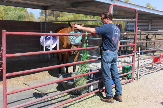 Bill Emmel pets a horse at Spirit Therapies, which helps soldiers with PTSD. Emmel created the nonprofit 22 Warriors Foundation to help combat veteran suicide. Special to View