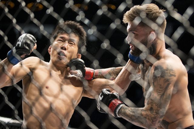 Cody Garbrandt, right, connects a right punch against Takeya Mizugaki in the bantamweight bout during UFC 202 at T-Mobile Arena on Saturday, Aug. 20, 2016, in Las Vegas. Garbrandt won by a first r ...