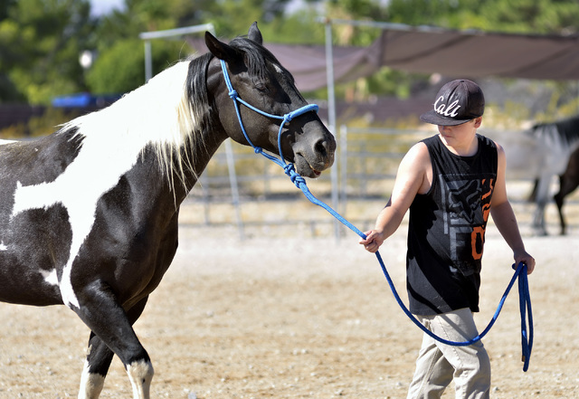 Adam Moericke works with Oreo at the Goals4Success equine therapy ranch at 5138 N. Juliano Road in Las Vegas July 23. Bill Hughes/View
