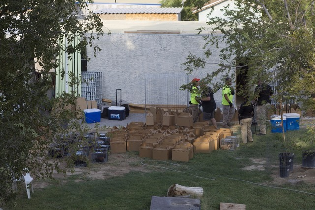 Birds are seen in boxes and cages in the backyard of a residence in the 4700 block of Stanley Avenue near Marion Drive in Las Vegas on Wednesday, Aug. 3, 2016, where Metro police served a search w ...