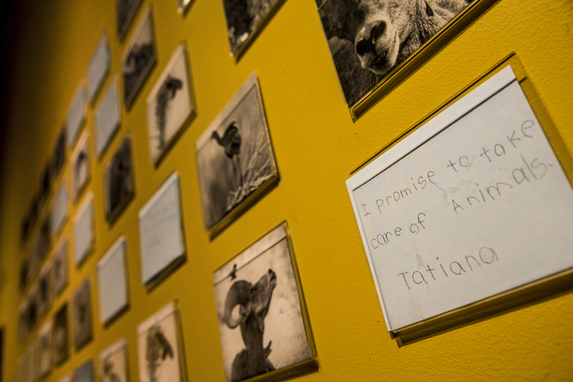 In an interactive children's exhibit promoting education and preservation, kids write notes that are featured alongside images displayed at the Nevada State Museum, Las Vegas. (Benjamin Hager/Las  ...