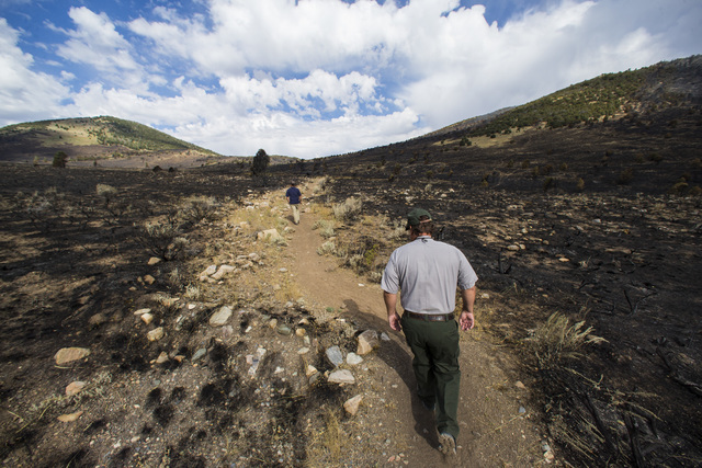 Tod Williams, chief of resources and planning at Great Basin National Park, right, walks along a path surrounded by damage from the Strawberry Fire at Great Basin National Park on Thursday, Aug. 2 ...