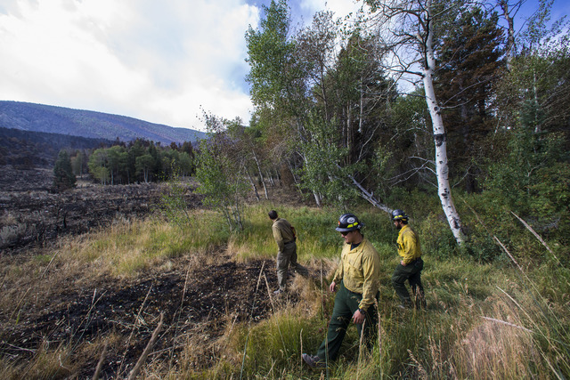Firefighters from Lake Mead National Recreation Area survey damage from the Strawberry Fire at Great Basin National Park on Thursday, Aug. 25, 2016. Chase Stevens/Las Vegas Review-Journal Follow @ ...