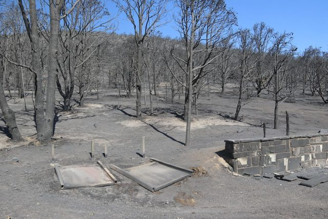 Burned trees and ash-covered ground mark the entrance to Strawberry Creek Campground Thursday. (Great Basin National Park/Facebook)