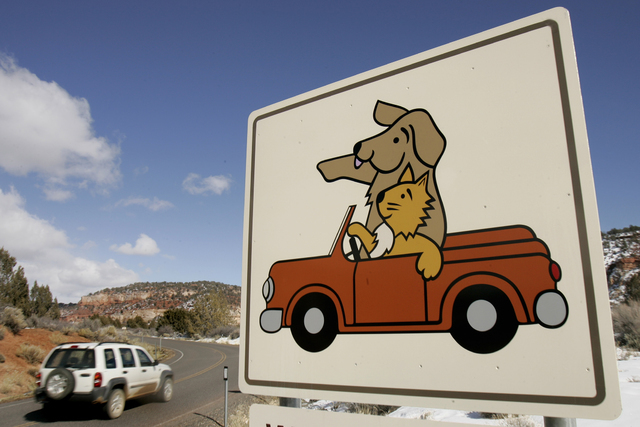 A vehicle drives toward Best Friends Animal Sanctuary north of Kanab, Utah. (Douglas C. Pizac/The Associated Press)