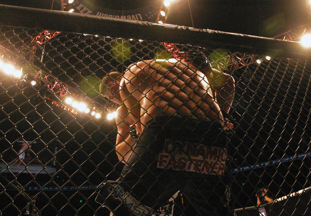 Ruslan Magomedov, back, pushes Josh Copeland into the ring fence in a heavyweight mixed martial arts bout during UFC Fight Night in Austin, Texas, Saturday, Nov. 22, 2014. (Michael Thomas/AP)