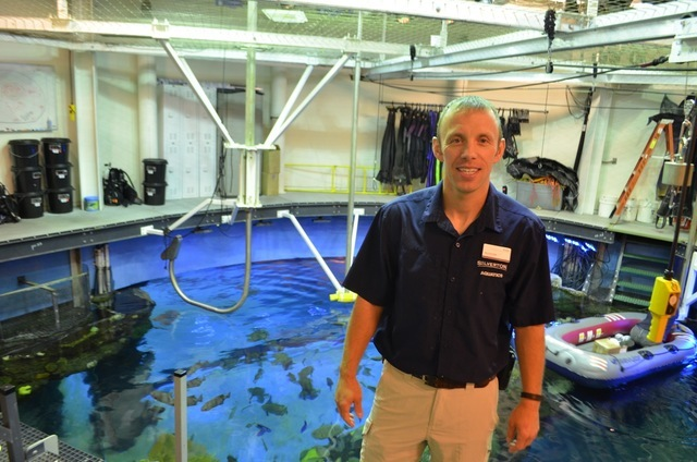 Silverton Mermaid Aquarium curator Ryan Ross gives a tour behind the scenes in the staging area where mermaids and divers enter the tank. Ginger Meurer/Special to View