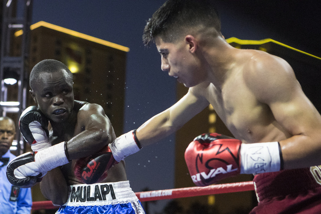 """Max """"The Baby Faced Assassin"""" Ornelas, right, lands a punch against Mulapi Enjani during the Knockout Night at the D Las Vegas on Friday, Sept. 30, 2016.  (Loren Townsley/Las Vegas Review-Journal) ..."""