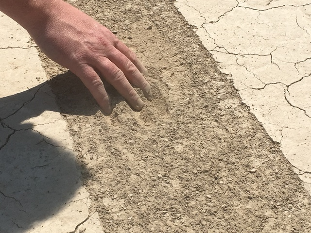 Josh Hoines, chief of natural and cultural resources at Death Valley National Park, examines the loose, powdery dirt left behind by a vehicle that illegally drove across Racetrack Playa late last  ...