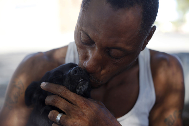 Carl Albert Graves kisses his dog Chico on Saturday, Sept. 17, 2016, at his encampment he shares with his fiancé behind EZ Pawn in Las Vegas. Rachel Aston/Las Vegas Review-Journal Follow @roo ...