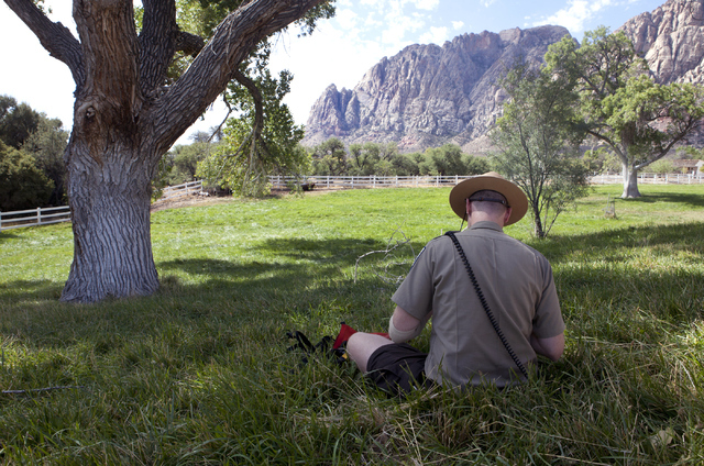 Park Interpreter David Low works on a painting during the Paint with a Ranger event at the Spring Mountain Ranch State Park on Saturday, Sept. 10, 2016. (Loren Townsley/Las Vegas Review-Journal) F ...
