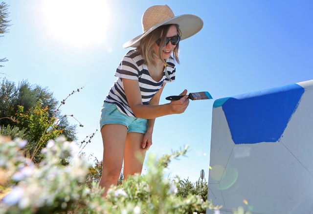 Tatiana Hantig paints a utility box in the pattern of a desert tortoise outside of Desert Breeze Park Community Center Oct. 21, 2013, in Las Vegas as part of the Zap! Project. The next installatio ...