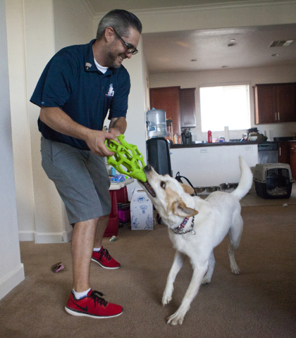 Army veteran Randy Dexter plays with his service dog Champion at their home in Henderson on Friday, Sept. 2, 2016. Dexter suffered traumatic brain injury (TBI) while in the Army and now is part of ...