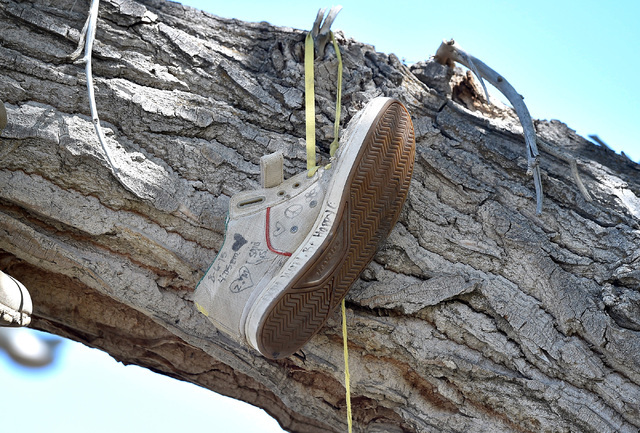 A shoe with a message hangs from a cottonwood branch Wednesday, July 13, 2016, in Middlegate, Nev. Locals say a fight between newlyweds, where the groom tossed his new bride's shoes into the tree, ...
