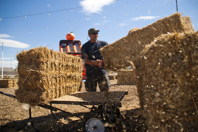 Brandon Shields prepares his pumpkin patch for visitors on the corner of St. Rose Parkway and Coronado Center Drive in Henderson on Tuesday, Sept. 27, 2016. Pumpkins should arrive in the next coup ...