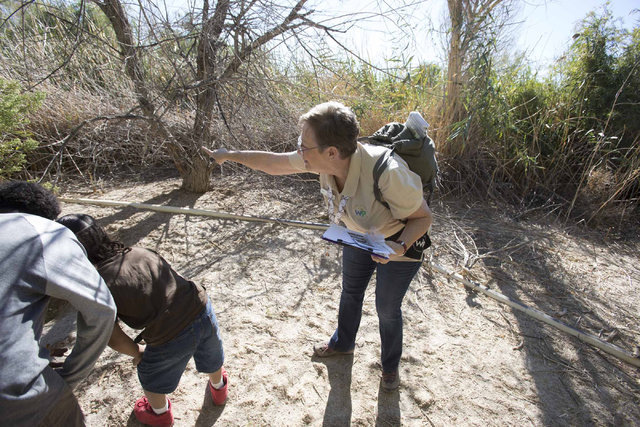 Jan Steinbaugh, program assistant at the Clark County Wetlands Park, points out a beaver hideout to youngsters while on a nature walk at the park on Saturday, Sept. 24, 2016. Richard Brian/Las Veg ...