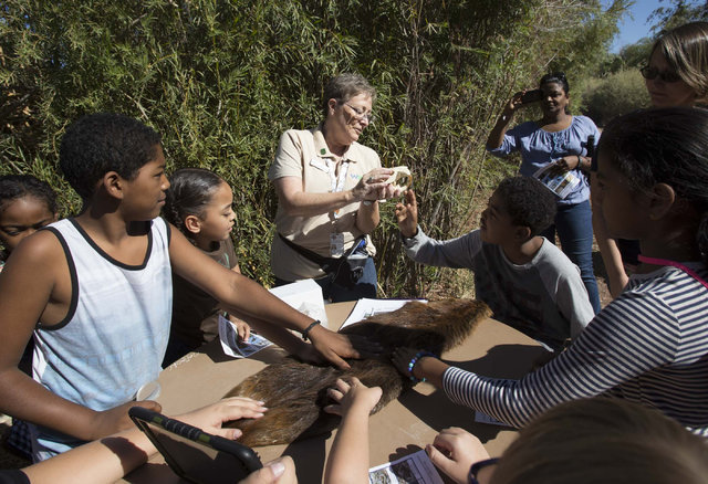 Jan Steinbaugh, center, program assistant at the Clark County Wetlands Park, shows off a beaver skull to curious youngsters while on a nature walk at the Wetlands Park on Saturday, Sept. 24, 2016. ...