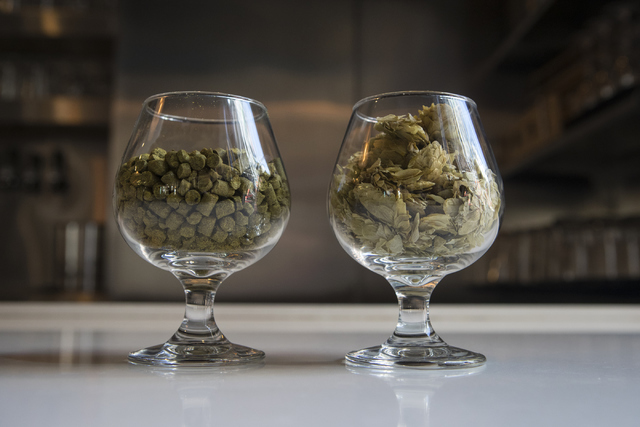 Two different kinds of beer hops are shown at Banger Brewing in Las Vegas on Tuesday, Sept. 13, 2016. Loren Townsley/Las Vegas Review-Journal Follow @lorentownsley