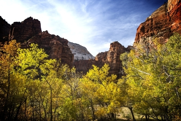 The National Park Service turns 100 Thursday, and park sites across the region are celebrating with free admission, including Zion National Park. (Chase Stevens/Las Vegas Review-Journal)