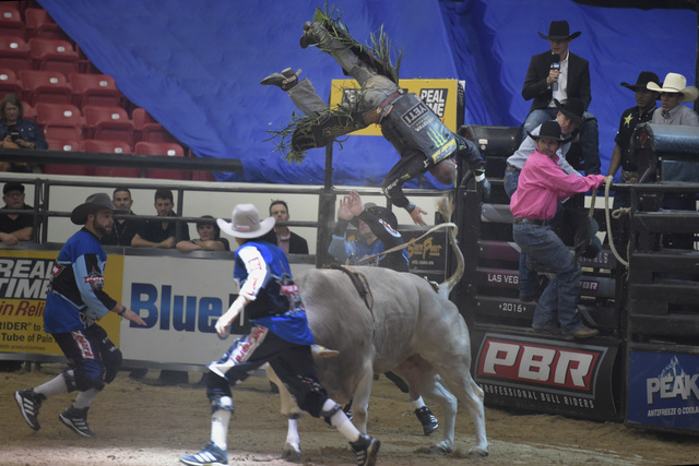 Chase Outlaw gets flipped off the back of Ms. Kitty's Peacemaker during the first night of the PBR Blue Def Finals on Saturday, Oct. 29, 2016, at South Point Arena. (Sam Morris/Las Vegas News Bureau)