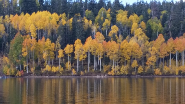 Fall colors line the shoreline at Utah's Kolob Reservoir, a nice touch to a good day of fishing. catching is just a bonus. (Doug Nielsen/Special to Review-Journal)