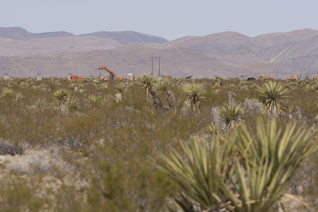 Approximately 180 acres of land purchased by Scott Gragson and partners at the Apex Industrial Park near U.S. 93 and Interstate 15 in North Las Vegas is seen, Wednesday, Oct. 12, 2016. Jason Oguln ...