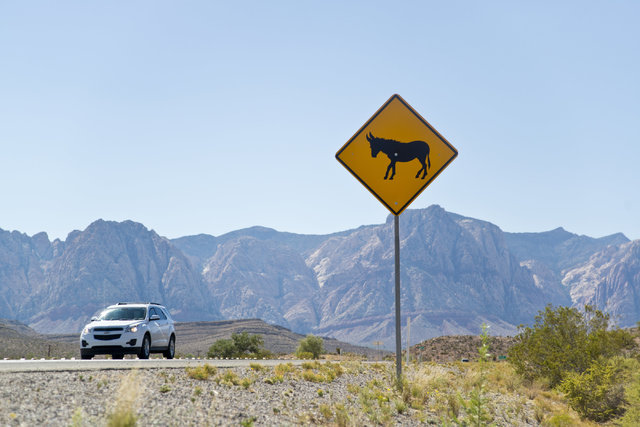 A burro crossing sign warns motorists along Blue Diamond Road near Red Rock Canyon National Recreation Area in Las Vegas on Monday, Aug. 8, 2016. The Bureau of Land Management is currently roundin ...