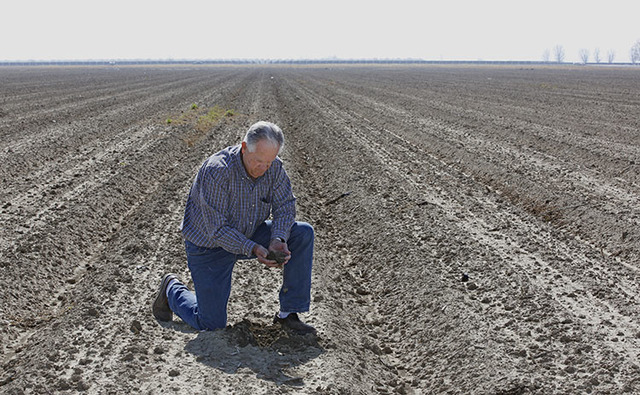 Mike Stearns, chairman of the San Luis & Delta-Mendota Water Authority, checks the soil moisture on land he manages near Firebaugh, Calif., in February 2016. (Rich Pedroncelli/The Associated P ...
