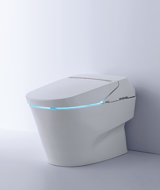 According to a 2016 Houzz Bathroom Trends Study, one-fifth of homeowners renovating and replacing the toilet are choosing a toilet with at least one high-tech feature.  (Courtesy)