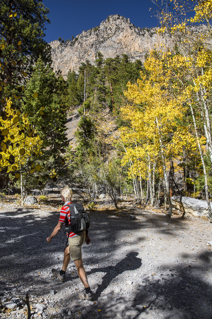 Frank Buchholz hikes up the Mary Jane Falls trail on Wednesday, Oct. 5, 2016, on Mount Charleston. (Benjamin Hager/Las Vegas Review-Journal)