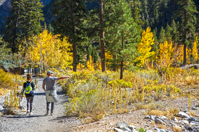 Zsanett Balogh and Che Lujan walk down the Mary Jane Falls trail on Wednesday, Oct. 5, 2016, on Mount Charleston. (Benjamin Hager/Las Vegas Review-Journal)