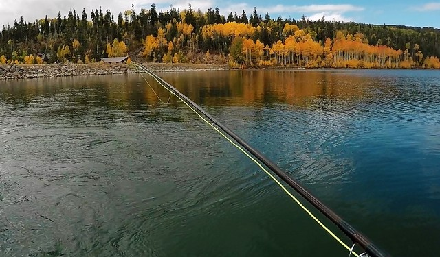 In October, the shoreline at Kolob Reservoir lights up in the colors of fall, a scenic addition to the excellent fishing experience available at this high-mountain water. (Doug Nielsen/Special to  ...