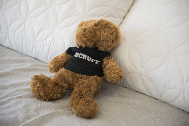 The teddy bear of Johnny Skandros, founder of gay dating app Scruff, is seen at his home in Las Vegas on Tuesday, Oct. 18, 2016. Martin S. Fuentes/Las Vegas Review-Journal
