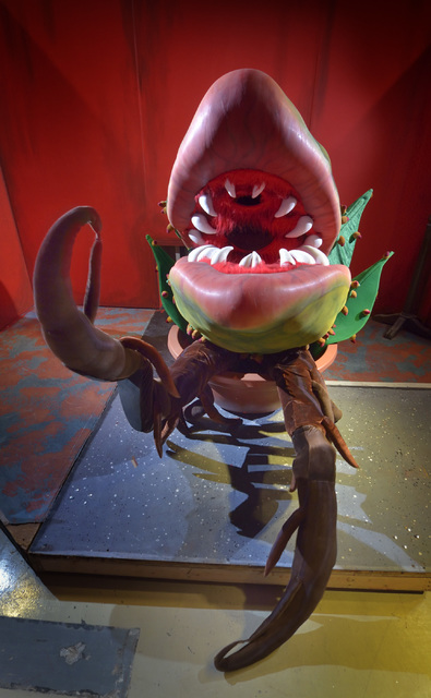 """Audrey II, played by Cody Angelo, is shown during a rehearsal for """"Little Shop of Horrors"""" in Alios at 1217 S. Main St. in Las Vegas on Monday, Oct. 3, 2016. Bill Hughes/Las Vegas Re ..."""