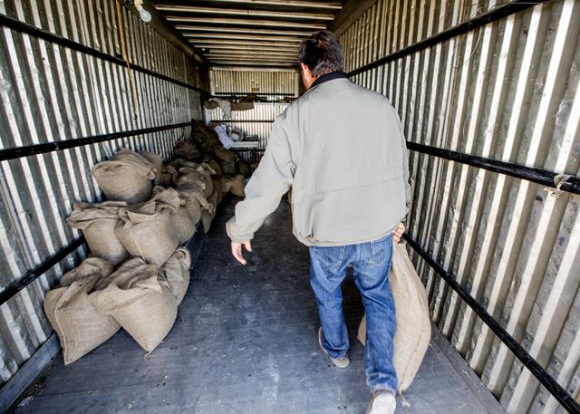 Dayer LeBaron, owner of WholesalePineNuts.com, carries a bag of pine nuts near Baker, Nev. on Wednesday, Sept. 28, 2016. (Jeff Scheid/Las Vegas Review-Journal Follow @jeffscheid)