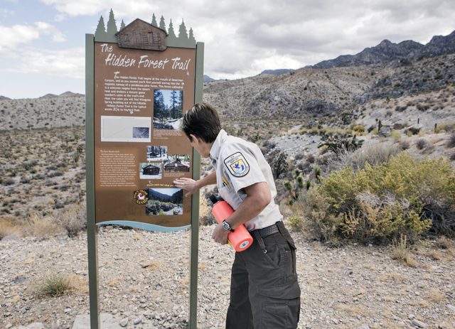 U.S. Fish & Wildlife Service refuge manager Amy Sprunger  looks at bullet holes on The Hidden Forest Trail sign in the  Desert National Wildlife Refuge on Friday, Sept. 30, 2016. The Air Force ...