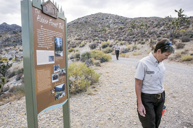 U.S. Fish & Wildlife Service refuge manager Amy Sprunger  stands near the trailhead at The Hidden Forest Trail in the  Desert National Wildlife Refuge on Friday, Sept. 30, 2016. The Air Force  ...