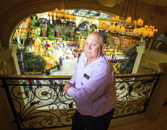 Jerry Bowlen, executive director of horticulture for MGM Resorts, stands near the Bellagio Conservatory on Thursday, Oct. 6, 2016. The fall display debuted on Sept. 25 and will be up until Nov. 25 ...