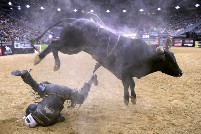 Nathan Schaper hits the dirt after being bucked off Wicked Stick during the fourth night of the PBR World Finals on Saturday, Nov. 5, 2016, at T-Mobile Arena in Las Vegas. (Sam Morris/Las Vegas Ne ...