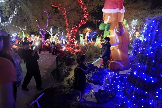 people wander the walkways during the annual cactus lighting ceremony at ethel m chocolates tuesday