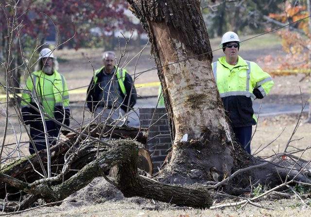Workers stand by a tree on Tuesday, Nov. 22, 2016, at the site of Monday's deadly school bus crash in Chattanooga, Tenn. Bus driver Johnthony Walker, 24, has been arrested on charges including veh ...