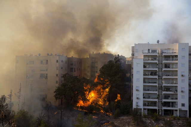 Wildfires burn in Haifa, Israel, Thursday, Nov. 24, 2016. Israeli police have arrested four Palestinians in connection with one of several large fires that damaged homes and prompted the evacuatio ...