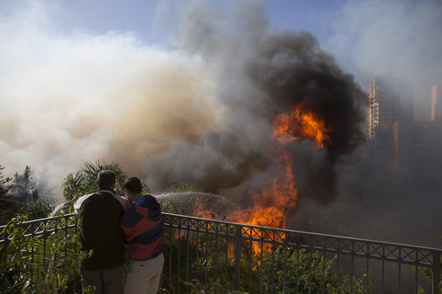 Men hose down wildfires in Haifa, Israel, Thursday, Nov. 24, 2016. Israeli police have arrested four Palestinians in connection with one of several large fires that damaged homes and prompted the  ...